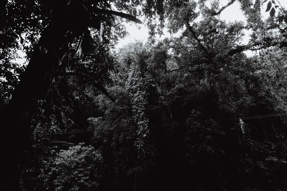 003-jamiaca